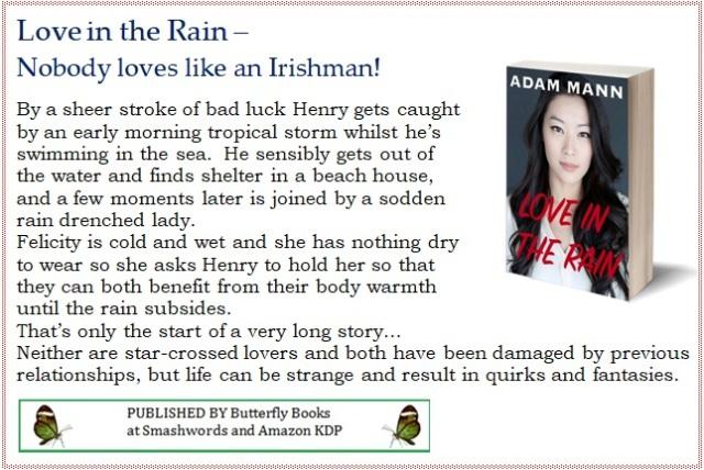 Love+in+the+Rain+-+blurb