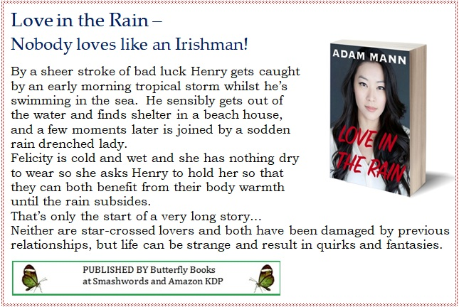 Love+in+the+Rain+-+blurb